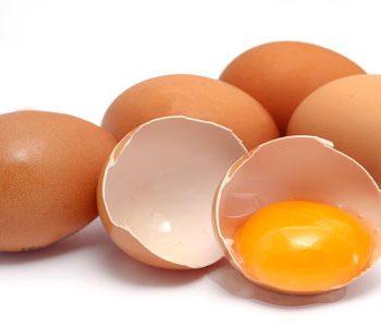 Дезинфекция яиц