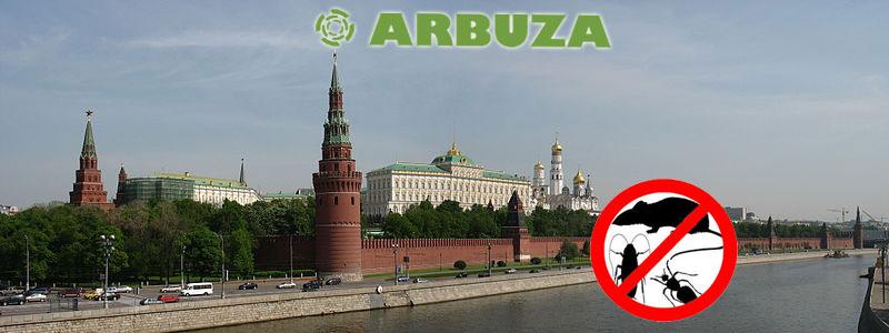 Arbuza.ru уже в Москве